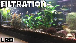 Aquarium Filtration How I am Able to Keep So Many Tanks