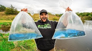 Get all your fishing gear at Karls here (SAVE 30%) - https://gokarls.com/afjwLR  Its time to get the backyard pond stocked up with fish before winter! Let me know what kind of fish I should stock next! ►Check out Googan Baits here - http://bit.ly/GooganBaits  ►SUBSCRIBE here - http://bit.ly/SUB2FLAIRR  ►Get the dopest Googan merch here - http://bit.ly/GOOGANMERCH  ►Check out my favorite Coffee here - http://bit.ly/2kNe6G3  ►Check out the fishing rods I use here - http://bit.ly/2frZFpi  ►Check out the sickest hunting gear on the market here - http://bit.ly/DUXGEARR  ▬▬▬▬▬▬▬▬▬▬▬▬▬▬▬▬▬▬▬▬▬▬▬▬  ►►► ADD ME ON ALL SOCIAL MEDIA ◄◄◄   ► SNAPCHAT: aflair430  ► INSTAGRAM: Fishing_with_Flair http://bit.ly/29pPNKN  ► TWITTER: @FishinwithFlair http://bit.ly/29ZVbBz  ► FACEBOOK: Fishing with Flair http://bit.ly/29GhPQ3 ▬▬▬▬▬▬▬▬▬▬▬▬▬▬▬▬▬▬▬▬▬▬▬▬  ► EMAIL FOR BUSINESS INQUIRIES ONLY: aflair430@gmail.com  ▬▬▬▬▬▬▬▬▬▬▬▬▬▬▬▬▬▬▬▬▬▬▬▬  ►Filming Gear ◄ My Expensive Vlogging Camera: http://amzn.to/2tJyhYS My Expensive Vlogging Camera Lens: http://amzn.to/2w4pReA My Cheap Vlogging Camera: http://amzn.to/2h7hLPG My GoPro: http://amzn.to/29dN2Zz My GoPro Mic: http://amzn.to/28X5GGE My Chest Mount: http://amzn.to/290TRRk My Vlogging Camera Tripod: http://amzn.to/28XGRJt My Editing Computer: http://amzn.to/2927kan My Sd Card: http://amzn.to/2a3gSCJ My Big Tripod: http://amzn.to/2a9NXNk My Drone: http://amzn.to/2gVitym  *The above links are Amazon affiliate*  ▬▬▬▬▬▬▬▬▬▬▬▬▬▬▬▬▬▬▬▬▬▬▬▬  ►►►PLAYLISTS◄◄◄  ► EPIC FISHING VLOGS → http://bit.ly/29vOxle ► TIPS AND TRICKS → http://bit.ly/29G6OBq ► UNBOXINGS → http://bit.ly/29F40TA ► BASS FISHING ON A BUDGET → http://bit.ly/29r2n8S ► ROD AND REEL ARSENALS → http://bit.ly/29w42Po ► ICE FISHING → http://bit.ly/2k8mAF0 ► HUNTING → http://bit.ly/2joXW32 ► FISHING WITH MY GIRLFRIEND → http://bit.ly/2k8ihuo ► SPRING BASS FISHING → http://bit.ly/2jTm9lN ► SUMMER BASS FISHING → http://bit.ly/2iVzkmB ► FALL BASS FISHING → http://bit.ly/2jJ8B9Y ► WINTER BASS FISHING