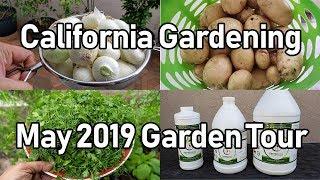 California Gardening Garden Tour - May 2019   Organic Gardening Tips & Advice