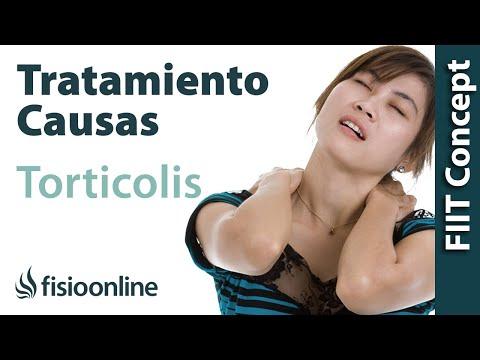 5 Ejercicios fáciles para cervicales | GUIA PARA PRINCIPIANTES
