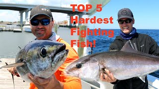 TOP 5 HARDEST Fighting SALTWATER FISH in Florida!