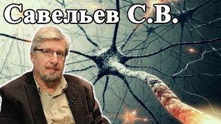 Как устроена нервная система человека. Лекция Савельева С.В. Часть 1