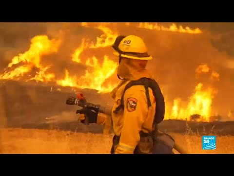 California wildfires: thousands flee homes as fires claim more lives