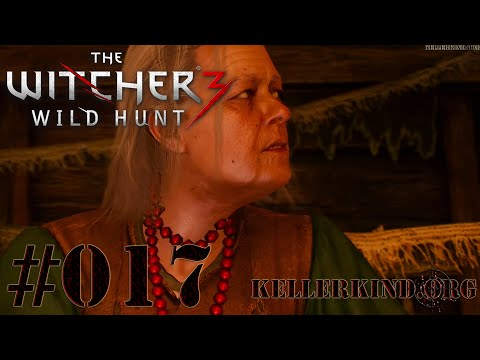 The Witcher 3 [HD|60FPS] #017 Zauberhafter Wandteppich ★ Let's Play The Witcher 3