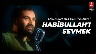 """DURSUN ALİ ERZİNCANLI """"HABİBULLAHI SEVMEK"""""""