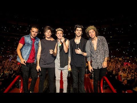You & I - One Direction Where We Are 2014 at San Siro (видео)