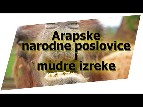 Citati O Prostate Liječenje Prostatitis U Volgograd