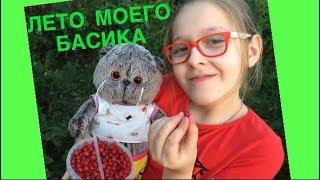 Как БАСИК ягоды собирал. Лето моего БАСИКА / Семейка Басиков