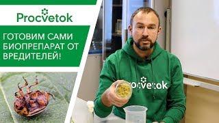 Инсектицид фипронил пищевые аттрактанты и консерванты