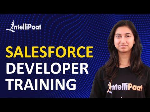 Salesforce Developer Training for Beginners | Salesforce ... - YouTube