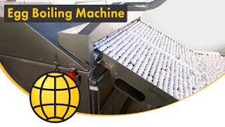 Egg Processing Machine For Hard Boiled Eggs - Large Scale Cooking And Peeling System - SANOVO