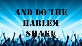 Baauer - Harlem Shake Lyrics