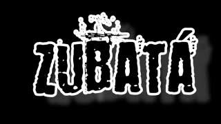Video (NA)PLECH-Zubatá cover