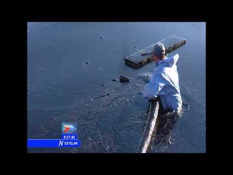 Derrame de petróleo afecta la bahía de Matanzas