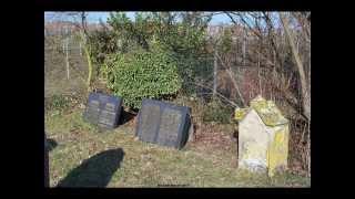 preview picture of video 'Venningen: Mazewot of the Jewish cemetery - Grabsteine auf dem jüdischen Friedhof'