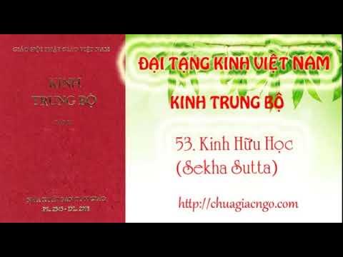 Kinh Trung Bộ - 053. Kinh Hữu học