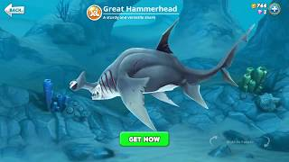hungry shark world, great hammerhead (3D Motion)