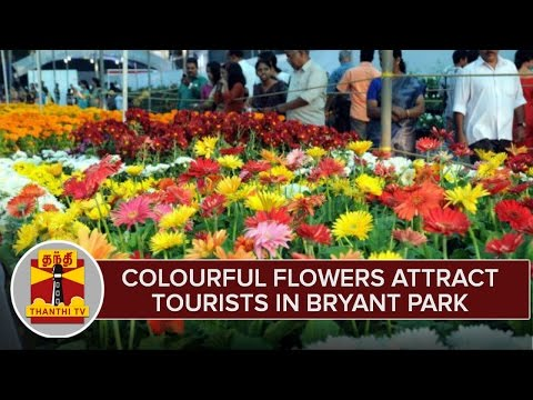 Colourful-Flowers-Attract-Tourists-at-Bryant-Park-Kodaikanal-During-55th-Flower-Show