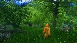 Oblivion with mods - Fantasy Graphics - Silverfish River Valley