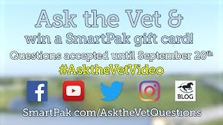 Ask your horse health questions for the November 2018 Ask the Vet video!
