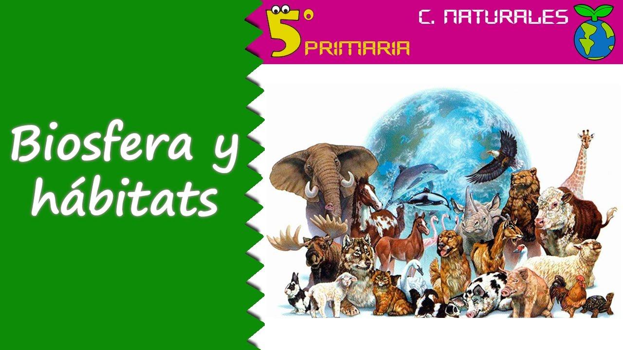 Biosfera y hábitats. Naturales, 5º Primaria. Tema 6