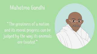 Animal Rights And Veganism Quotes Over The Centuries.