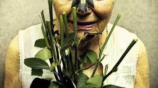 Retaliate - Can't Relate - Thorns Without a Rose.m4v