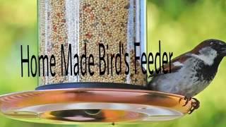 How to make a bird feeder at Home/Homemade plastic bottle birds feeder:-)