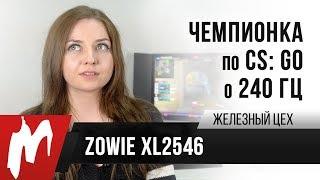 Чемпионка мира по CS:GO о 240 Гц — Zowie XL2546 — Железный цех — Игромания *ОБНОВЛЕНО*
