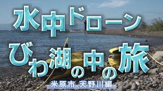 水中ドローンびわ湖の中の旅:米原市天野川編