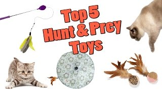 Top 5 Hunt & Prey Toys For Your Cat in 2016!