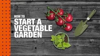 How to Start a Vegetable Garden | The Home Depot
