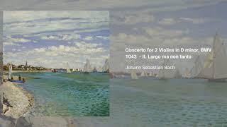 Concerto for 2 Violins in D minor, BWV 1043
