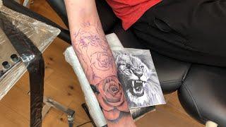 LIVE TATTOO: LION & ROSE FOREARM