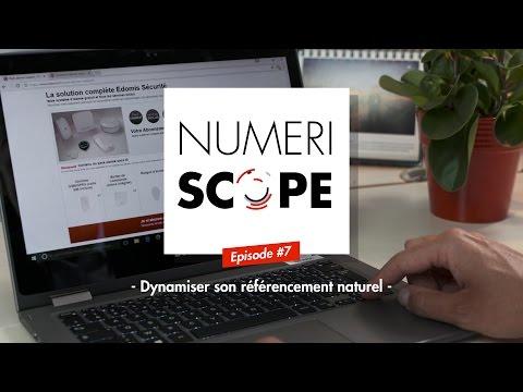 Numériscope #7 Dynamiser son référencement naturel