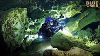 Florida Cave Diving | JONATHAN BIRDS BLUE WORLD