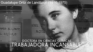 La beatificación de Guadalupe será en Vistalegre Arena (Madrid)