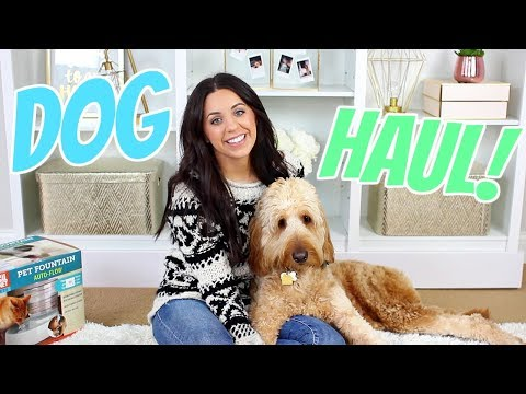 PUPPY HAUL! MY GOLDENDOODLE DUDE! AMAZON AND HOMEGOODS FINDS!