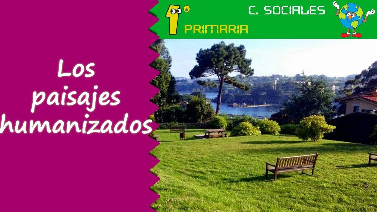 Ciencias Sociales. 1º Primaria. Tema 5: Paisajes Humanizados: Rural y Urbano