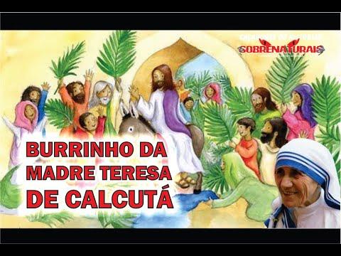 REFLEXÃO - O BURRINHO DE MADRE TERESA DE CALCUTÁ
