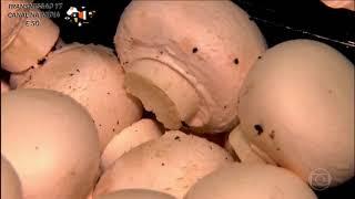 Cadeia da Fungicultura no Globo Rural