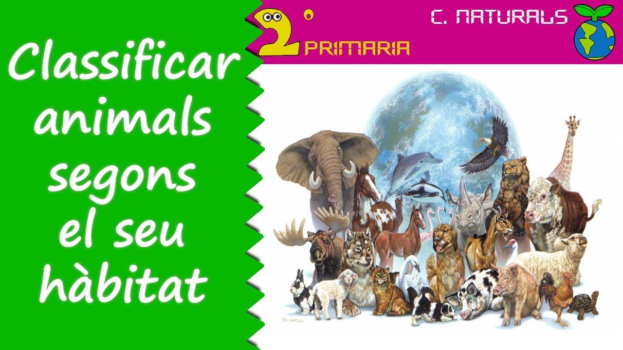 Ciències de la Naturalesa. 2n Primària. Tema 4. Classifiquem els animals segons s'adapten