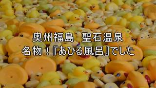 奥州福島聖石温泉『あひる風呂』funnyvideosrubberduckspecial