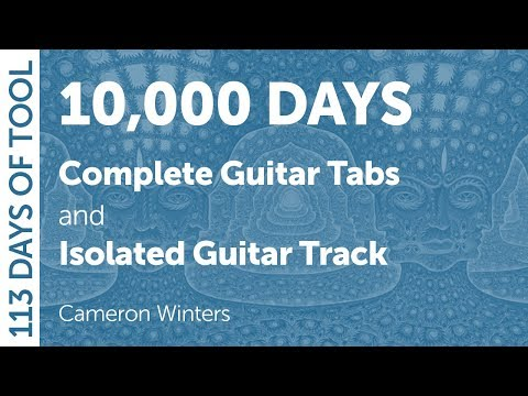 Tool - 10,000 Days - Guitar Cover - 113 Days of Tool