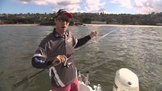 NEW VIDEO: Squid fishing tips