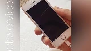 Замена нижнего шлейфа iPone 5s в Тюмени
