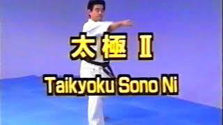 №3-2-1Kata, Taikyoku Sono Ichi, Ni, San #Kyokushin #Karate #Encycklopedia #Киокушин #каратэ