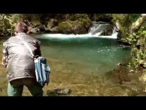 Spinning con il cucchiaino alla trota fario autoctona-Buche di montagna