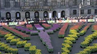 Национальный день тюльпанов