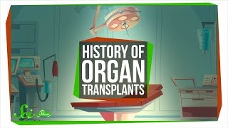 The Messy Path to the First Successful Organ Transplants